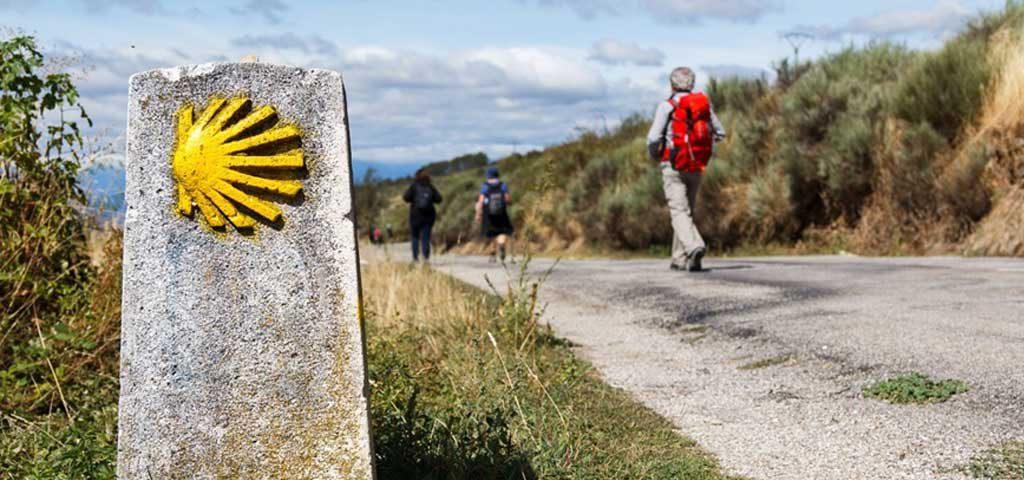 Camino de Santiago Codice Calixtino